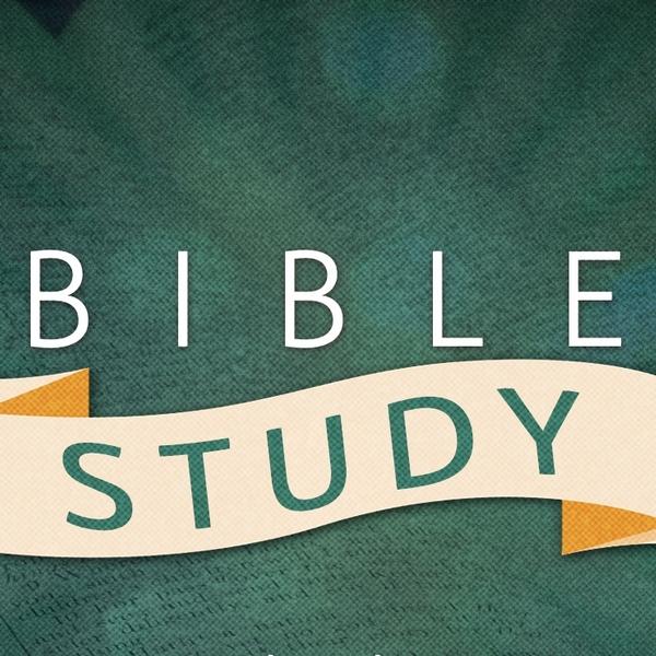 Sherwin's Bible Study